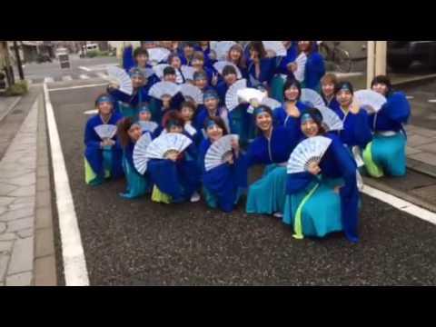 NITF総踊りこんぴら通り本番前記念撮影♡(^_-)-☆