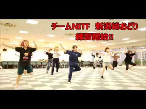 新潟総踊り!~NITF~いよいよ練習開始です!